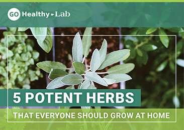 potent herbs