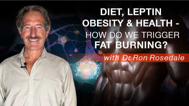 diet leptin obesity health